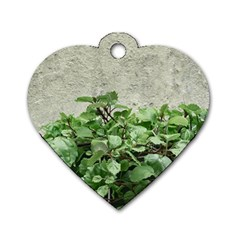 Plants Against Concrete Wall Background Dog Tag Heart (Two Sides)