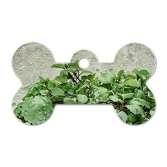 Plants Against Concrete Wall Background Dog Tag Bone (One Side)