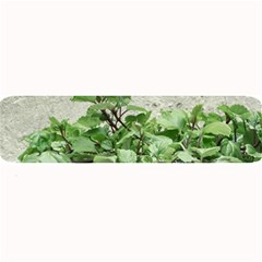 Plants Against Concrete Wall Background Large Bar Mats