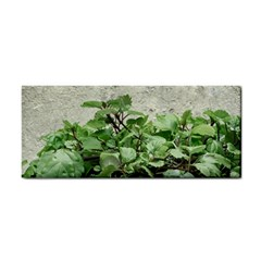 Plants Against Concrete Wall Background Cosmetic Storage Cases