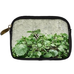Plants Against Concrete Wall Background Digital Camera Cases