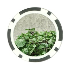 Plants Against Concrete Wall Background Poker Chip Card Guard (10 pack)