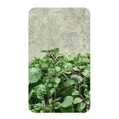 Plants Against Concrete Wall Background Memory Card Reader