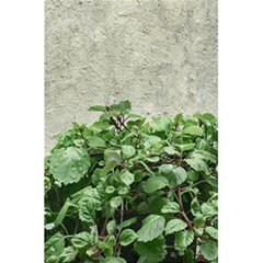 Plants Against Concrete Wall Background 5.5  x 8.5  Notebooks