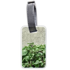 Plants Against Concrete Wall Background Luggage Tags (One Side)