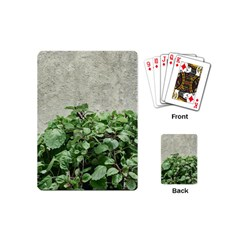 Plants Against Concrete Wall Background Playing Cards (Mini)