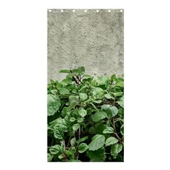 Plants Against Concrete Wall Background Shower Curtain 36  x 72  (Stall)
