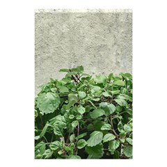 Plants Against Concrete Wall Background Shower Curtain 48  x 72  (Small)