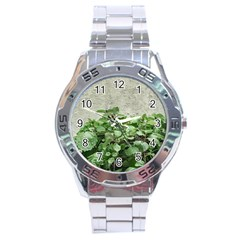 Plants Against Concrete Wall Background Stainless Steel Analogue Watch