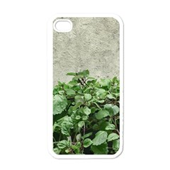 Plants Against Concrete Wall Background Apple iPhone 4 Case (White)