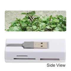 Plants Against Concrete Wall Background Memory Card Reader (Stick)