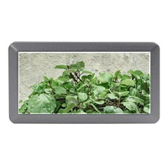 Plants Against Concrete Wall Background Memory Card Reader (Mini)