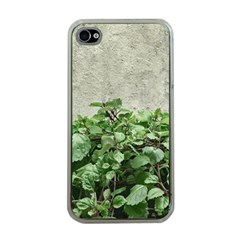 Plants Against Concrete Wall Background Apple iPhone 4 Case (Clear)