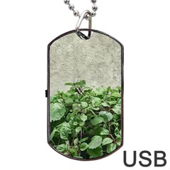 Plants Against Concrete Wall Background Dog Tag USB Flash (Two Sides)