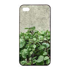Plants Against Concrete Wall Background Apple iPhone 4/4s Seamless Case (Black)