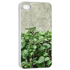 Plants Against Concrete Wall Background Apple iPhone 4/4s Seamless Case (White)