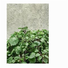 Plants Against Concrete Wall Background Large Garden Flag (Two Sides)