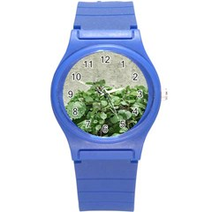 Plants Against Concrete Wall Background Round Plastic Sport Watch (S)