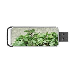 Plants Against Concrete Wall Background Portable USB Flash (One Side)