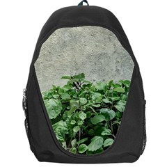 Plants Against Concrete Wall Background Backpack Bag