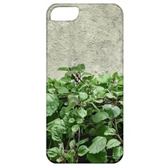 Plants Against Concrete Wall Background Apple iPhone 5 Classic Hardshell Case