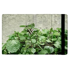 Plants Against Concrete Wall Background Apple iPad 2 Flip Case