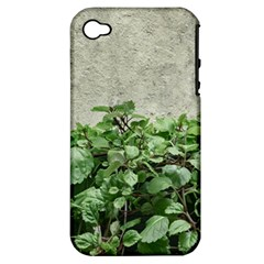 Plants Against Concrete Wall Background Apple iPhone 4/4S Hardshell Case (PC+Silicone)