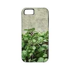 Plants Against Concrete Wall Background Apple iPhone 5 Classic Hardshell Case (PC+Silicone)