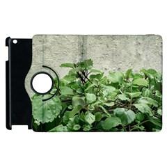 Plants Against Concrete Wall Background Apple iPad 2 Flip 360 Case