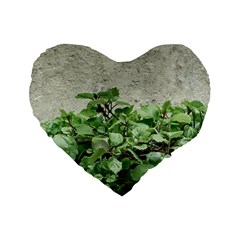 Plants Against Concrete Wall Background Standard 16  Premium Heart Shape Cushions