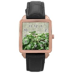 Plants Against Concrete Wall Background Rose Gold Leather Watch