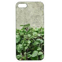Plants Against Concrete Wall Background Apple iPhone 5 Hardshell Case with Stand