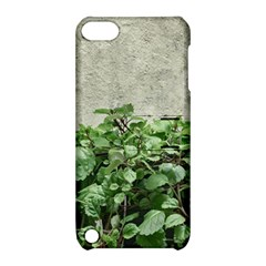 Plants Against Concrete Wall Background Apple iPod Touch 5 Hardshell Case with Stand