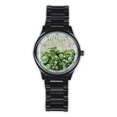 Plants Against Concrete Wall Background Stainless Steel Round Watch