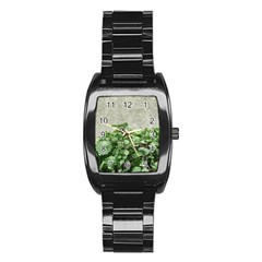 Plants Against Concrete Wall Background Stainless Steel Barrel Watch