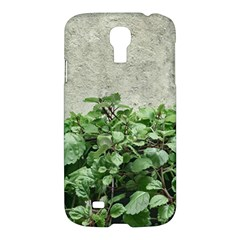 Plants Against Concrete Wall Background Samsung Galaxy S4 I9500/I9505 Hardshell Case