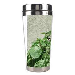 Plants Against Concrete Wall Background Stainless Steel Travel Tumblers