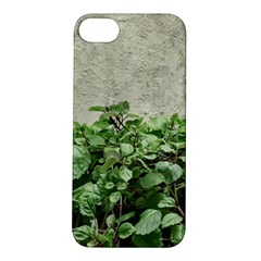 Plants Against Concrete Wall Background Apple iPhone 5S/ SE Hardshell Case