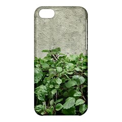 Plants Against Concrete Wall Background Apple iPhone 5C Hardshell Case