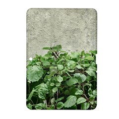 Plants Against Concrete Wall Background Samsung Galaxy Tab 2 (10.1 ) P5100 Hardshell Case