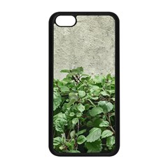 Plants Against Concrete Wall Background Apple iPhone 5C Seamless Case (Black)