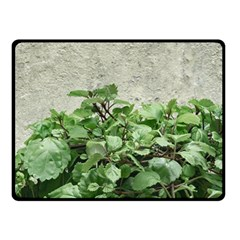 Plants Against Concrete Wall Background Double Sided Fleece Blanket (Small)