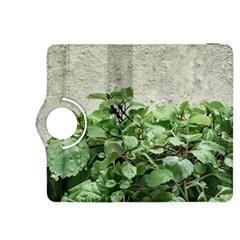 Plants Against Concrete Wall Background Kindle Fire HDX 8.9  Flip 360 Case