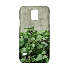 Plants Against Concrete Wall Background Samsung Galaxy S5 Hardshell Case