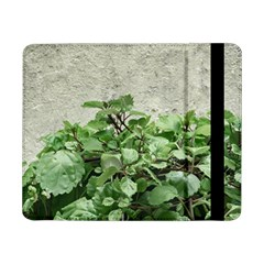 Plants Against Concrete Wall Background Samsung Galaxy Tab Pro 8.4  Flip Case