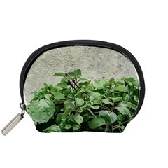 Plants Against Concrete Wall Background Accessory Pouches (Small)