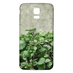 Plants Against Concrete Wall Background Samsung Galaxy S5 Back Case (White)