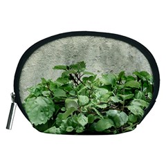 Plants Against Concrete Wall Background Accessory Pouches (Medium)