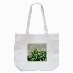 Plants Against Concrete Wall Background Tote Bag (White)