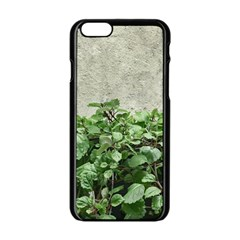 Plants Against Concrete Wall Background Apple iPhone 6/6S Black Enamel Case